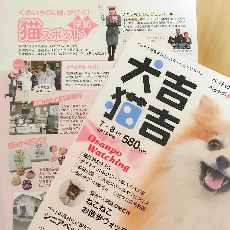 犬吉猫吉九州版「くのいちOL娘。が行く!猫スポット探訪」7・8月号